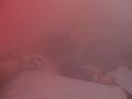 Rauch- und Nebelkammer